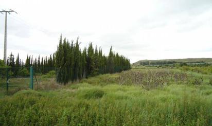 Terreno en venta en Ctra Nacional 3040, S/n, Barillas