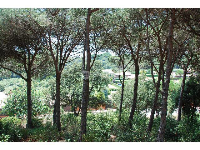 Urban plot  Sant andreu de llavaneres, zona de - Sant Vicenç de Montalt. Oportunidad - bonita parcela en zona residencial