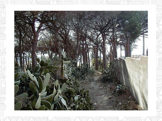 Foto 4 de Finca rústica en Urb. Golf - Centro Del Pueblo / Sant Vicenç de Montalt