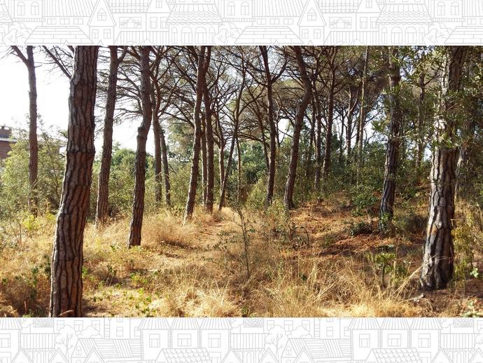 Foto 29 de Finca rústica en Urb. Golf - Centro Del Pueblo / Sant Vicenç de Montalt