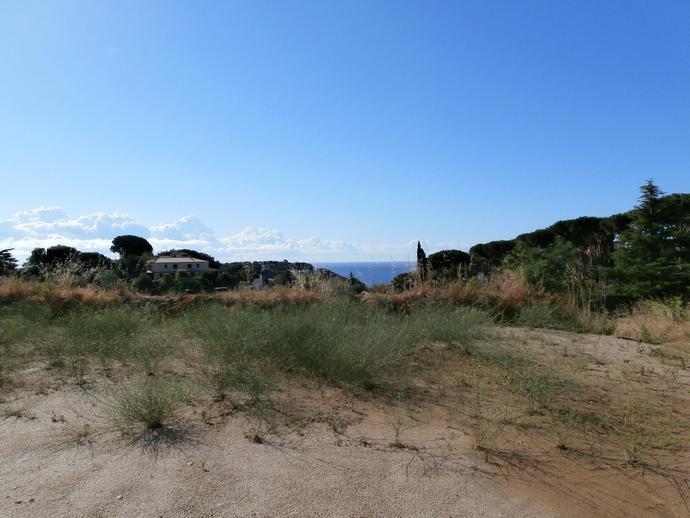 Foto 21 de Terreno Residencial en Nucleo Historico / Sant Vicenç de Montalt