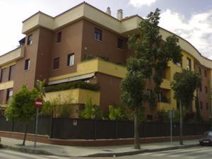 Piso en Alquiler en Bami / Bellavista - La Palmera