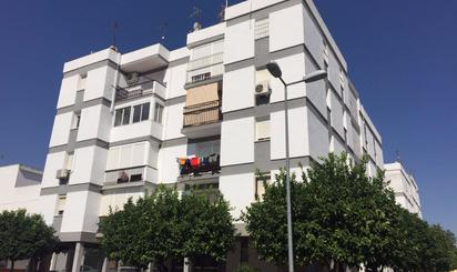 Viviendas en venta en Vega del Guadalquivir