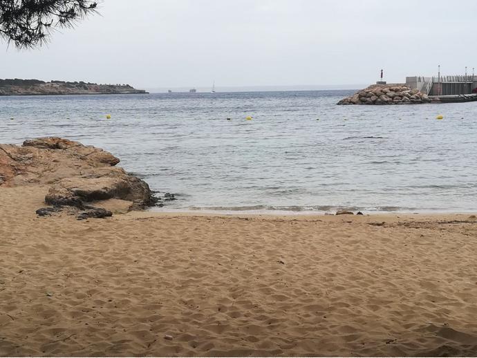 Foto 14 de Estudio en Palma De Mallorca ,Sant Agustí / Sant Agustí,  Palma de Mallorca
