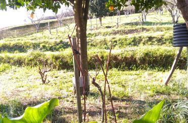 Terreno en venta en Ortuella