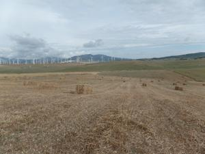 Terreno en Venta en Tarifa, Zona de - Tarifa / Tarifa