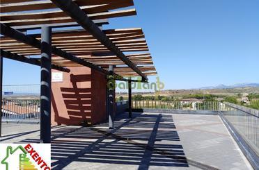 Garaje en venta en Viana