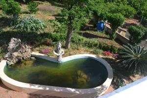 Venta Vivienda Casa-Chalet alzira barraca de aguas vivas