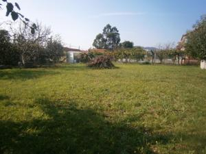 Venta Terreno Terreno Urbanizable vigo - cabral