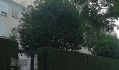Habitatges en venda a Sevilla Capital