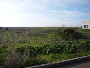 Terreno en Venta en Resto Provincia de Badajoz - Lobón / Lobón