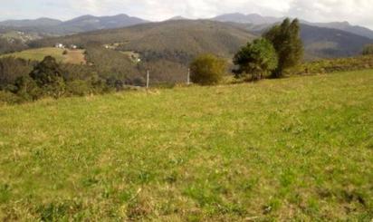 Grundstuck zum verkauf in Coaña