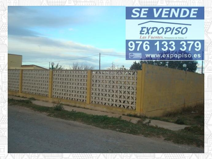 Foto 2 de Chalet en Casa En  Luceni, 1500M² De Terreno Con Casa 200M² / Luceni