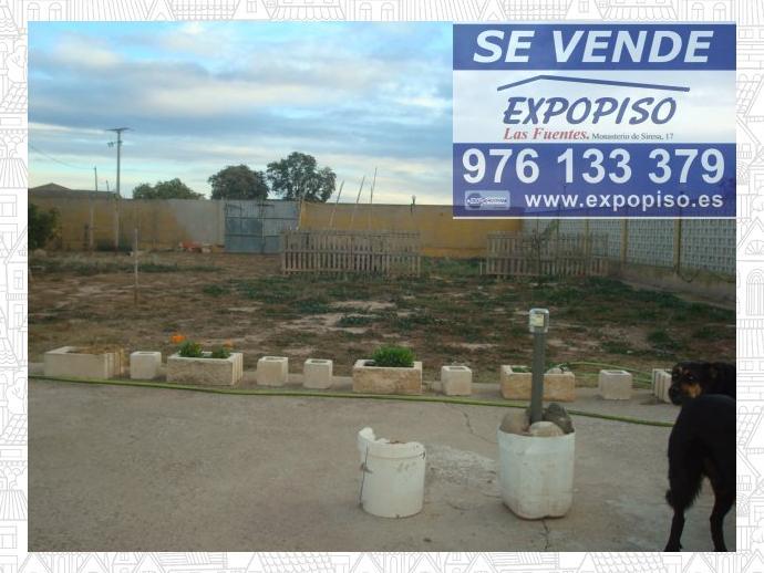 Foto 17 de Chalet en Casa En  Luceni, 1500M² De Terreno Con Casa 200M² / Luceni