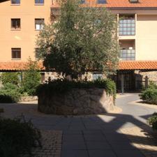 Piso en Alquiler en Cañada Nueva / Abantos - Carmelitas