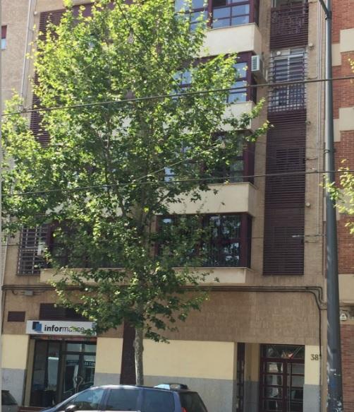 Pisos en venta piso en venta de 4 habitaciones en zaragoza capital de segunda mano - Pisos en venta en zaragoza ...