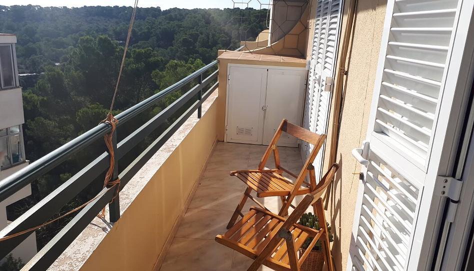 Foto 1 von Dachboden zum verkauf in Magaluf - Palmanova - Badia de Palma, Illes Balears