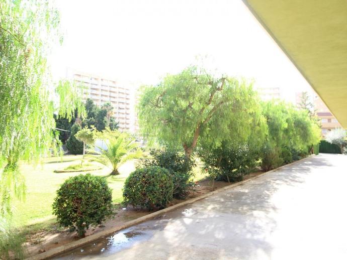 Foto 3 de Apartamento en Columbretes, 7-9 Zona Playa de la Concha