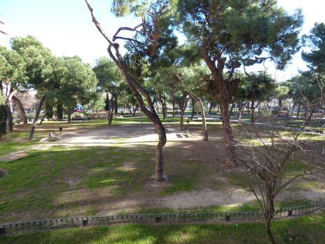 Pisos de alquiler con terraza en Alcorcón