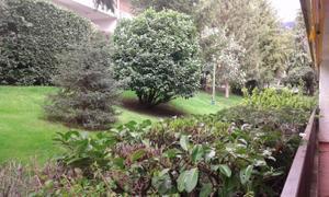Piso en Alquiler en Padre Wigfrido / Jardín de los Reyes - Parque Real
