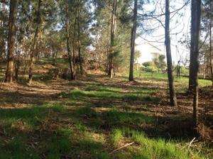 Venta Terreno Terreno Residencial santiago de compostela y alrededores - boqueixón