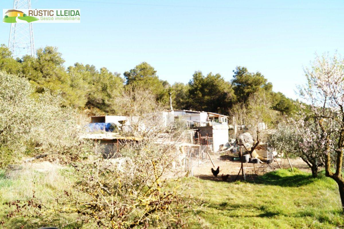 Casa  Garrigues - Tarrés. Casa de campo (de unos 98 m2) con terreno ( unos 13.094 m2), en