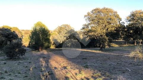 Photo 3 of Constructible Land for sale in Turia El Bosque, Madrid