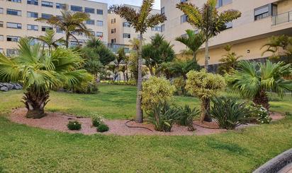 Viviendas de alquiler con opción a compra en Las Palmas de Gran Canaria
