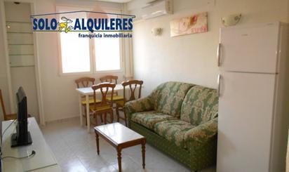 Viviendas y casas de alquiler en Ogíjares