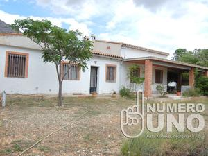 Fincas rústicas de alquiler en Alicante Provincia