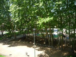 Alquiler Vivienda Piso mollet del vallès - can borrell - la plana de lledó