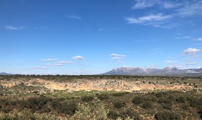 Terrenos en venta en Atarfe