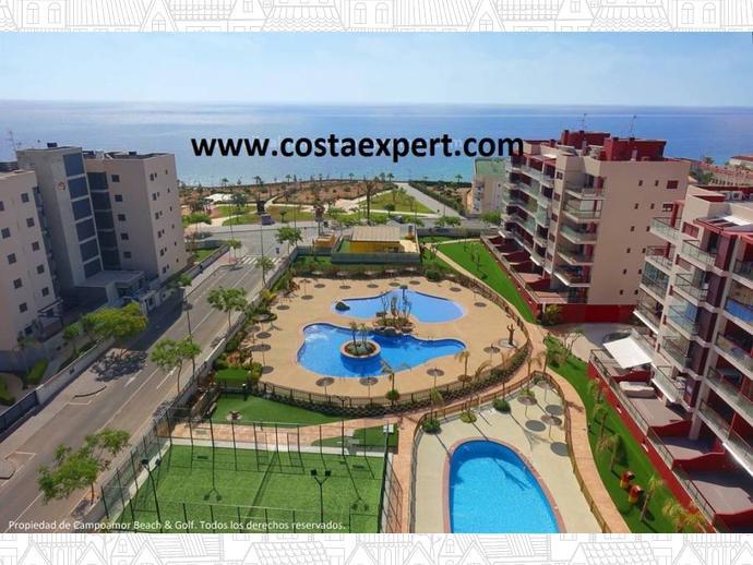 Apartamento en pilar de la horadada en orihuela costa mil - Casas para alquilar en las mil palmeras ...
