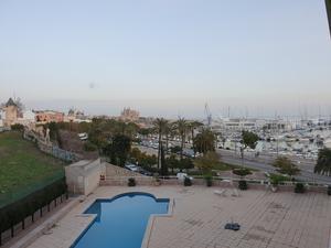 Estudios de alquiler en Palma de Mallorca