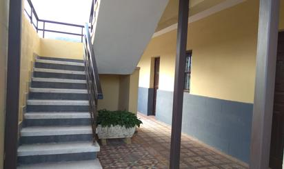 Casa o chalet de alquiler en Camino la Triciada, 18, San Cristóbal de La Laguna - La Vega - San Lázaro