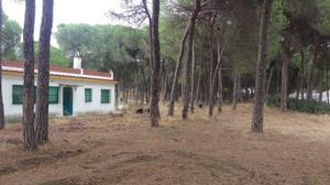 Chalet en Venta en Al Sitio de Verdejo / Moguer