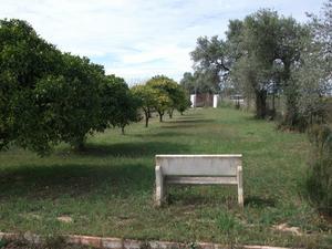 Finca rústica en Venta en San Juan del Pto-trigueros / Trigueros