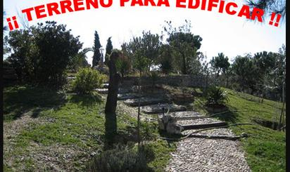 Constructible Land for sale in Aneto, Batres