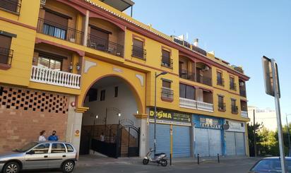 Viviendas y casas de alquiler en Gójar