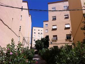 Plantas bajas de compra en Málaga Capital