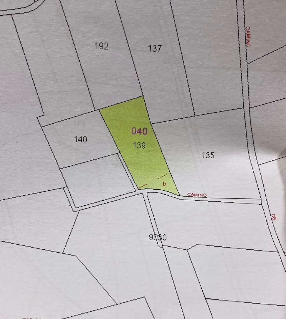 Terrain urbain  Terreno rustico 4,77 hg kaki carlet. Terreno rustico con plantación de kaki y goteo, bien situado y b