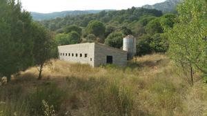 Finca rústica en Venta en Riudoms, Zona de - Alforja / Alforja