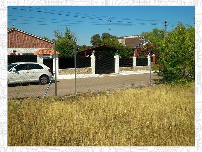 Foto 3 de Terreno en Urbanización Castillo De Buitrago 325 / Escalona
