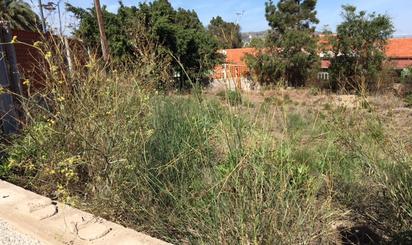 Terrenys en venda a Santa Brígida