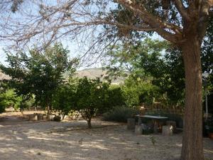 Finca rústica en Venta en Alhama de Murcia, Zona de - Alhama de Murcia / Alhama de Murcia