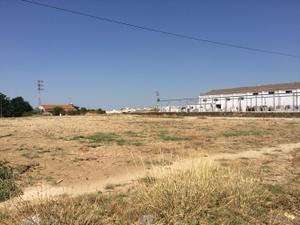 Terreno Urbanizable en Venta en Bajo Guadalquivir - Lebrija / Lebrija